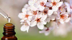 fiori di bach e boccetta